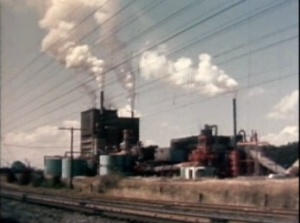 pollution-in-paradise-1962